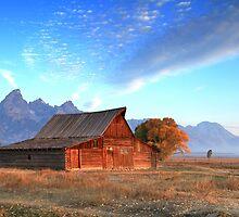 The Old Barn by Ann  Van Breemen