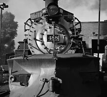 Cumbres & Toltec NGRR by Gary Gray