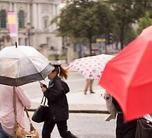 Rainy Day by lukeuser