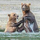 Bear Affection by Linda Sparks