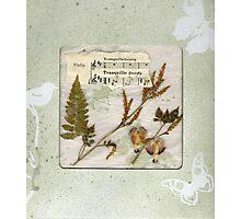 Tranquillo Windowed Gift Box Photographic Print