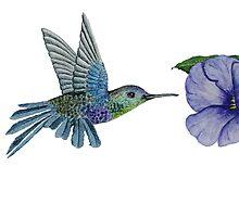 Hummingbird by TawnyaVanterve