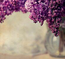 Close up of fresh lilacs by JBlaminsky