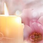 Flower, Candle, Flame by Emma  Wertheim