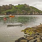 Lough Hyne - Skibbereen - West Cork - Ireland by TonyCrehan