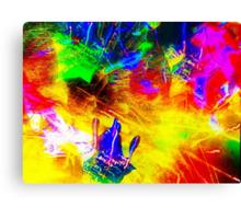 A stellar day Canvas Print