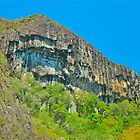 Mount Beerwah by Penny Smith