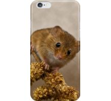 Mousie iPhone Case/Skin