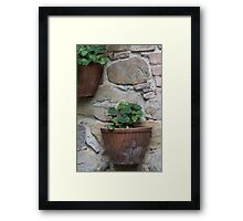 basket with flowers Framed Print
