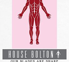 House Bolton Sigil by P3RF3KT