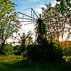 Afternoon Sun  by Paul Lubaczewski