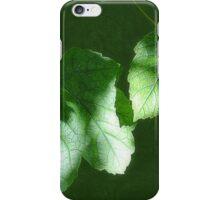 Leaves in Shadow iPhone Case/Skin