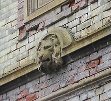 LION by Jack Catford