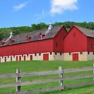 Century Old Barn by lorilee