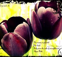 Dark Tulips by parasoljunkie