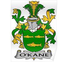 O'Kane Coat of Arms (Irish) Poster