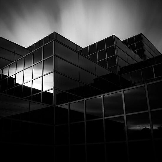 growth by Jon  DeBoer