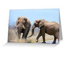 CONFRONTATIONS -  THE AFRICAN ELEPHANT – Loxodonta Africana Greeting Card