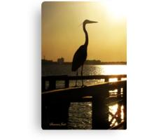 The Heron ~ Sundown Silhouette Canvas Print