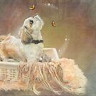 Puppy dreams by Lyn Evans