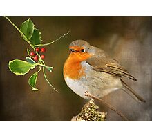 Season's greetings Photographic Print
