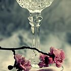 Wine - Lace And Flowers by Evita