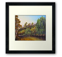 Weeping Willow Creek Framed Print