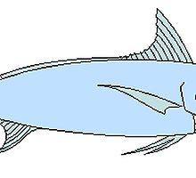 Blue Marlin by kwg2200