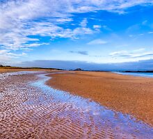Vast - North Berwick Beach & The North Sea by Mark Tisdale