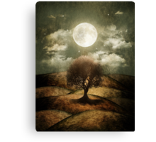 Once upon a time... The lone tree. Canvas Print