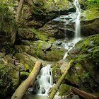 Lower Doyles River Falls – Shenandoah National Park, Virginia by Jason Heritage