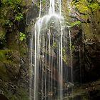 Doyles River Shower – Shenandoah National Park, Virginia by Jason Heritage