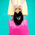 Doggie Bag by Kelly Nicolaisen