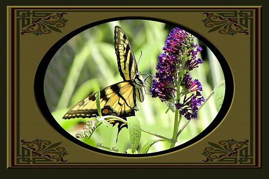 Swallowtail Butterfly Having Lunch by SummerJade