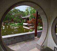 Chinese Garden view at The Huntington by Celeste Mookherjee