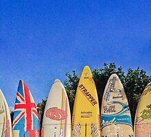 Hawaiian Surf Fence by Angelina Hills