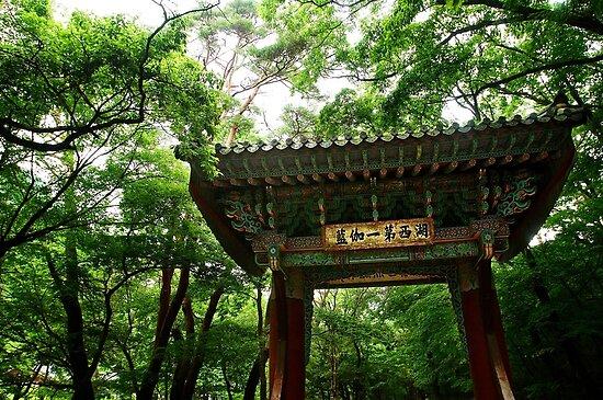Beopju Gate - North Chungcheong, South Korea by Alex Zuccarelli