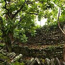 Nan Madol Panorama - Pohnpei, Micronesia by Alex Zuccarelli