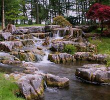 Cascading Waters - St Fiachra's Garden by TonyCrehan