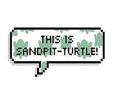This is sandpit-turtle! Photographic Print