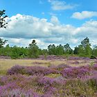Broxhead Common by relayer51