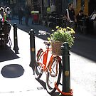 Spring has sprung early - Degraves Street.  by geof