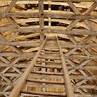 Warped Ladder by Desaster