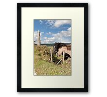 pair of Irish horses and ancient round tower Framed Print