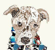 a pit bull day  by bri-b