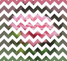 Pink Roses in Anzures 3 Chevron 3T by Christopher Johnson