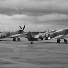 Spitfires In Springtime by PathfinderMedia
