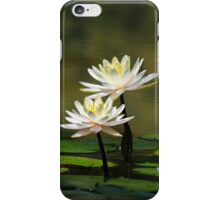 A Quiet Table for Two iPhone Case/Skin