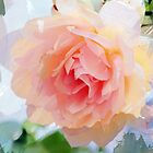 Painterly Pink Rose by walstraasart