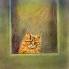 Cat Ennui by Lynn Starner